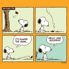Tuesday with Snoopy.