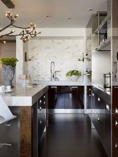 Bush Street contemporary-kitchen