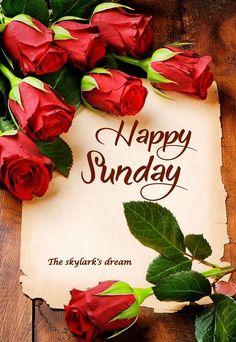 Morning Rose, Good Morning Flowers, Good Morning Good Night, Beautiful Morning, Sunday Morning, Happy Sunday Quotes, Morning Love Quotes, Love You Gif, Love You Images