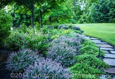 new jersey landscape design and planting