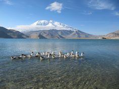 Mount Rainier, Mountains, Nature, Travel, South America, Continents, Europe, Naturaleza, Viajes