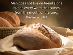 Man does not live on bread alone but on every word that comes from the mouth of the Lord. Deuteronomy 8:3