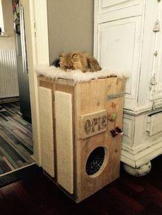 Opie's unieke krabpaal eenvoudig zelf te maken! Benodigdheden: steigerhout, kattenspeeltjes, twee krab planken te bestellen bij zooplus, 2 kussens en aan de slag ermee! Binnen no time een krabpaal waarin iedere kat zich thuis voelt!