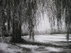 Charcoal Willow Tree Drawing Workshop