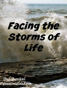 """""""Facing the Storms of Life"""" Are you facing a storm in your life? Are wind and waves threatening to sink you boat? Are you worried about our nation, the economy or something else? Remember when you're facing the storms of life, He still rebukes the wind and waves. April 5 - Soul Survival"""