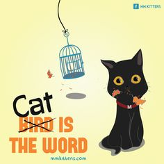 Cat is the word