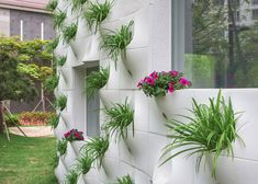 Wall facade built in flower pots Flower Wall, Flower Pots, Decoration Facade, Vases, Wall Design, House Design, Wooden Greenhouses, Home Greenhouse, Building Facade