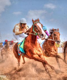 Horse Racing-to go from 0-40mph in 3 seconds. What a RUSH! I can't even imagine the adrenaline rush we would get from doing this