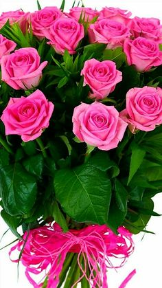 1 million+ Stunning Free Images to Use Anywhere Rose Flower Wallpaper, Flowers Gif, Happy Flowers, Flowers Nature, Pretty Flowers, Silk Flowers, Rose Flower Arrangements, Flower Vases, Very Beautiful Flowers