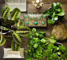 Bolsos de fiesta  www.salvadorbachiller.com Suitcases, Backpack Purse, El Salvador, Store