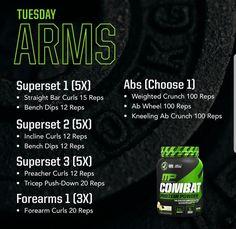 Full Body Workout Routine, Gym Workout Tips, Biceps Workout, Fit Board Workouts, Bodybuilding Plan, Bodybuilding Workouts, Total Gym Exercise Chart, Spartan 300 Workout, Super Set Workouts