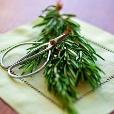 These easy-to-grow herbs offer big flavor and health benefits, right from your backyard or windowsill.   Health.com