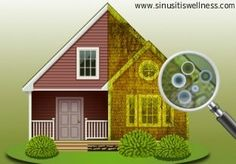 Are you one of those who are planning to buy a home? Then you surely won't know whether there is a presence of mold in it or not.