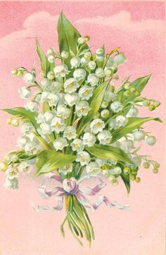 bunch of lilies-of-the-valley tied with purple/white ribbon, pink background   456px × 700px