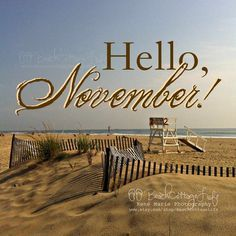 November is Merry and Bright in Myrtle Beach