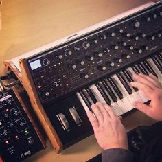 Testing the #moog synthesizer  #synth #groove #music #MusicProduction #vst #beirut #daw #dance #edm #cubase