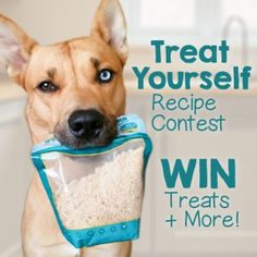 Use Best Bully Sticks Bully Flakes in your DIY recipe for a chance to make your dog a star & Win Natural Dog Treats!