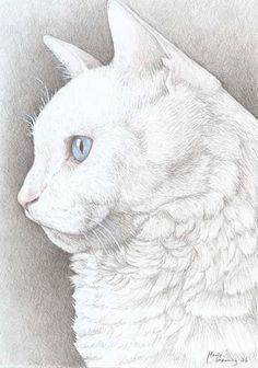 """Marie Lund Hoff  """"Cat"""""""