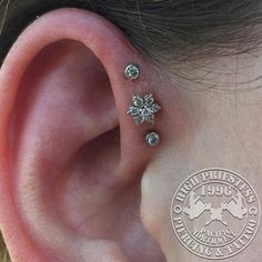 Triple forward helix done by our very own @jimsens at our campus location in Eugene. White gold middle flower with all cz accent gems. What a cute setup! #piercingsofinsta #keeporegonweird #legitpiercings #highpriestess96 #highpriestess #safepiercing #appmember #tripleforwardhelix #goldforall