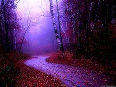 Misty Nature PowerPoint Background – Minimalist Backgrounds