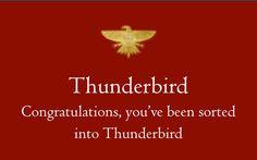 Ilvermorny  Thunderbird House