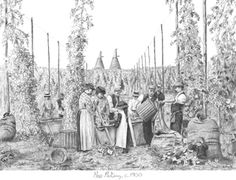 What a amazing drawing by Nigel Wallace of Kent Hop Pickers working in the Hop Fields!
