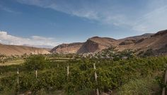In One of the World's Oldest Winemaking Regions, a New Generation Revives an Ancient Tradition An Armenian wine expert highlights the best places to experience the rebirth of a wine culture stifled under Soviet rule