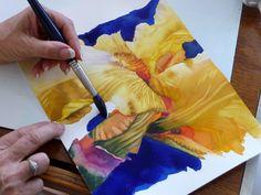 iris - art demo - dark valued background - watercolor