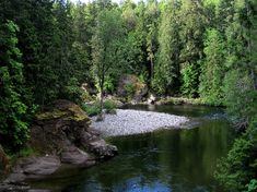 Englishman River, near Top Bridge Crossing in Parksville. Photo by Janice McOuat, 2012 myPQB Story Contest. #vancouverisland #islandtime #explorebc #explorecanada
