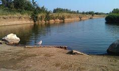 Lissos River