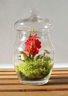 Miniature Red Vanda Orchid Terrarium - Mother's Day