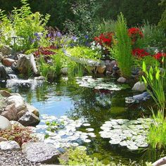 Before You Work On Your Home's Landscape, Consider Adding a Koi Pond Don't let your fear of landscaping keep you from having the best looking house on the block. Backyard Water Feature, Ponds Backyard, Garden Pond Design, Garden Waterfall, Pond Fountains, Natural Pond, Pond Water Features, Pond Landscaping, Pond Plants