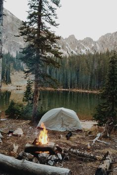 The joy of finding the perfect spot to pitch your tent.