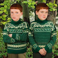 Sean en Patrick zijn een identieke tweeling. Ze kunnen elkaars gedachten lezen. Ze spelen graag honkbal. Sean is de bange van de twee. Patrick is meer stoerder. Patrick wordt door de Erlkoning ontvoerd, Sean zal hem moeten redden uit de elfenwereld.