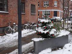 Karamella: Jul på Nørrebro