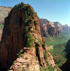 angel's landing @ zion natl park-- last leg of the hike, which climbs 1500 ft elevation gain in 2.5 miles