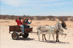 Namibian Desert Express While driving on the D1918 gravel road through the Dorop National Par