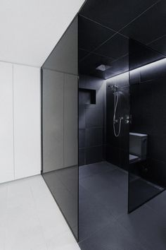 | interior | black & white | black glass | black ceiling | division | delineation | formal |