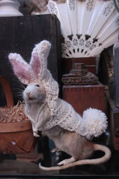 EASTER RATS - Google Search
