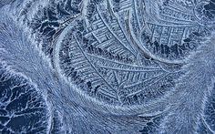 The freezing weather overnight left beautiful frost patterns on car windscreens