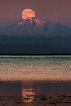 Moon rising over Mount Baker Tsawwassen, British Columbia, Canada. Photography by Alexis Birkill. For more fabulous moon photography, see our photo galleries. Stars Night, Stars And Moon, Moon Beauty, Ciel Nocturne, Monte Fuji, Shoot The Moon, Pics Of The Moon, New Moon Pictures, Full Moon Photos