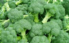 What Vegetables Have The Most Protein Broccoli