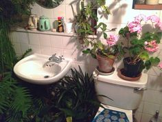 Free Yourself   netlfix:   in love with my friends bathroom