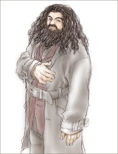 A portrait of Hagrid. Harry Potter Wizard, Harry Potter Style, Yer A Wizard Harry, Harry Potter Fan Art, Rubeus Hagrid, Harry Potter Illustrations, Fan Drawing, Fantastic Beasts And Where, Chibi
