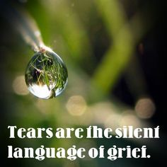 """Tears are the silent language of grief."" - Voltaire, French philosopher"