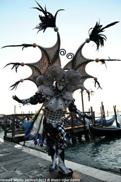 Venice Carnival 2013 Piazza San Marco (pinned from photographers pins)