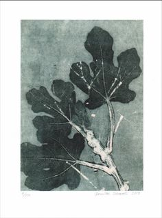 Fig Branch, printed on 300g paper, limited edition of 100, Euros 47; www.pernillefolcarelli.dk