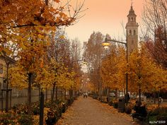 Saronno, Province of Varese , region of Lombardy, Italy