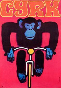 Circus Monkey on bicycle Cyrk Malpka na rowerze Gorka Wiktor Polish Poster