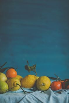 citrus lemon orange still life